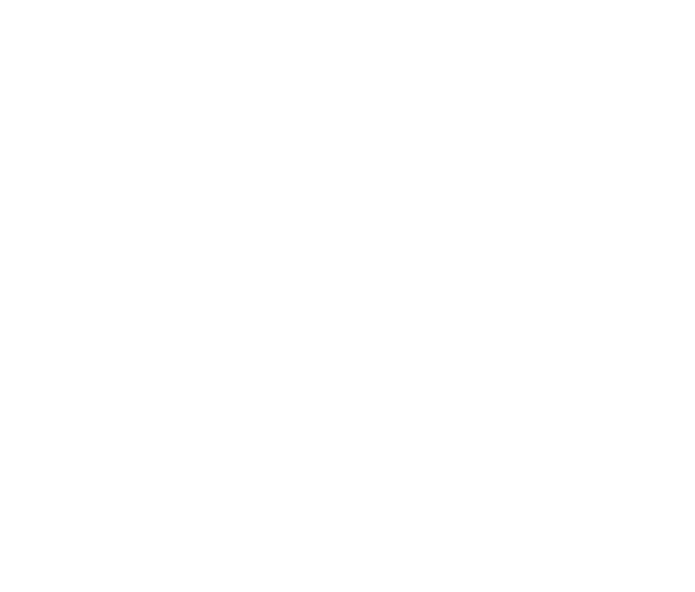 That Jorvik Viking Thing
